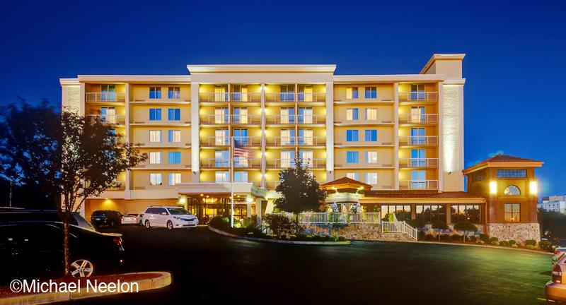 Hotel Night web